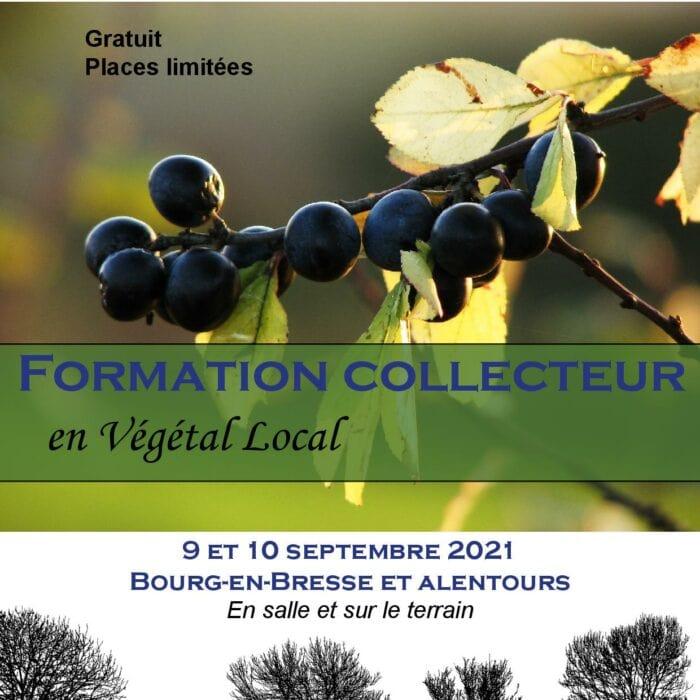 Formation Collecteurs en Végétal Local – 9 et 10/09/2021 – Ain