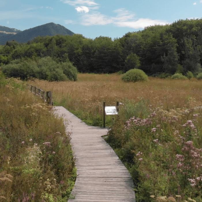 Pays d'Evian Vallée d'Abondance : un Territoire Engagé pour la Nature